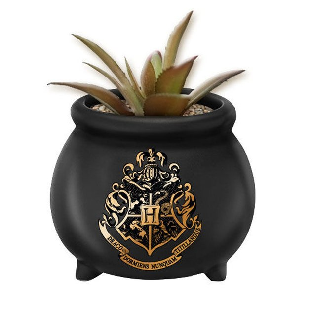 Harry Potter: Hogwarts Apothecary Crest - Ceramic Planter