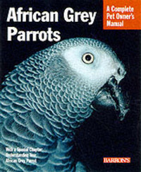 African Grey Parrots by Maggie Wright