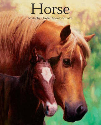Horse by Malachy Doyle