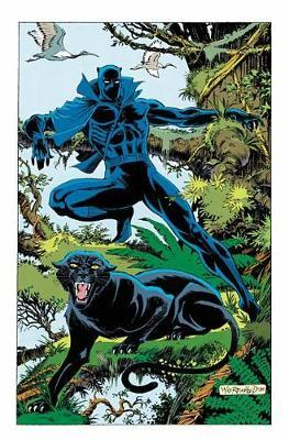 Black Panther: Panther's Quest by Don McGregor