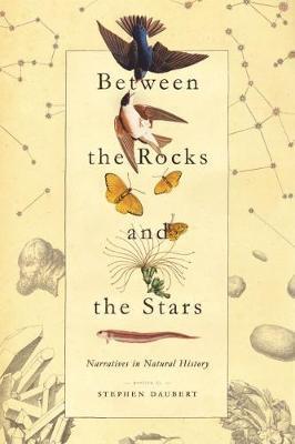 Between the Rocks and the Stars by Stephen Daubert