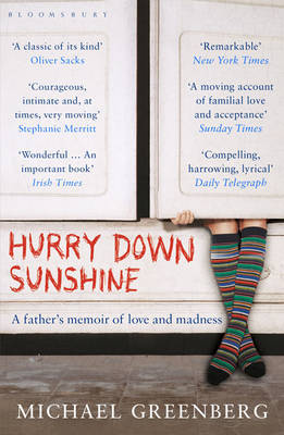 Hurry Down Sunshine by Michael Greenberg image