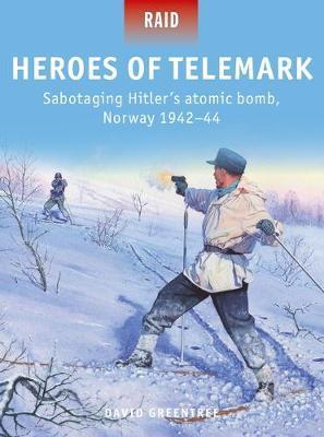 Heroes of Telemark by David Greentree