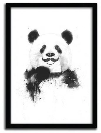 Balazs Solti Framed Illustration - Funny Panda