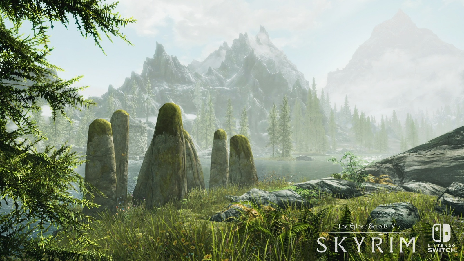 The Elder Scrolls V: Skyrim for Nintendo Switch image