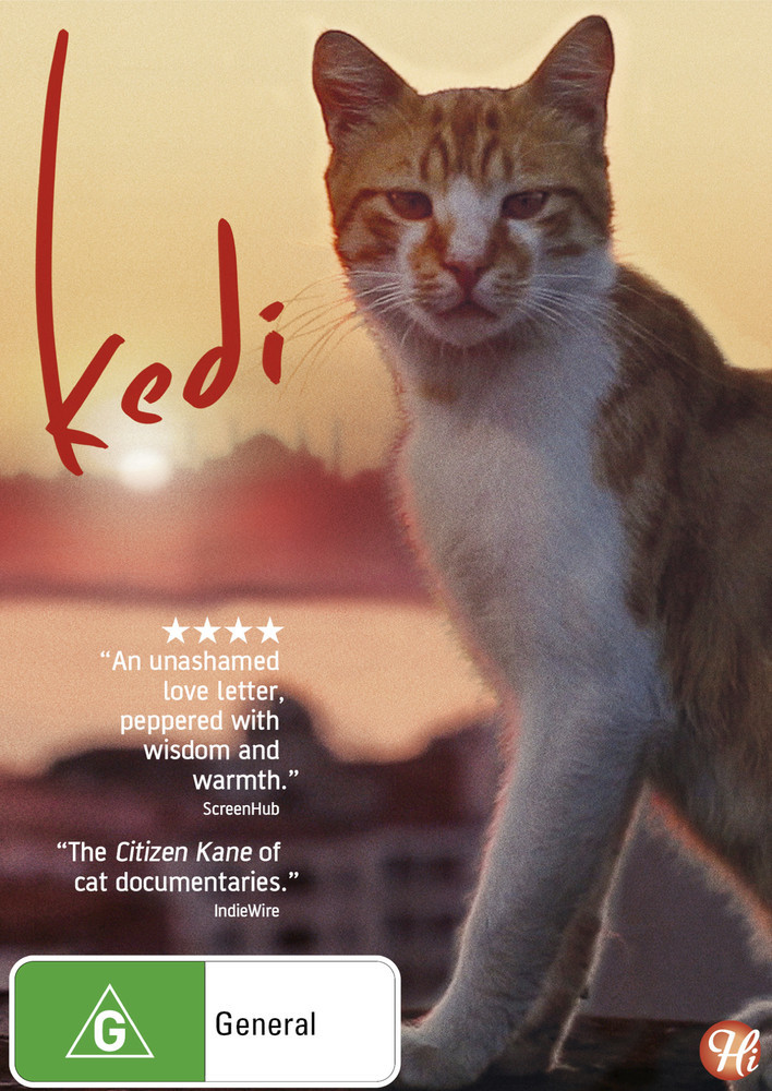 Kedi on DVD image