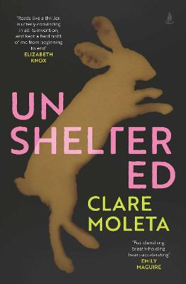Unsheltered by Clare Moleta