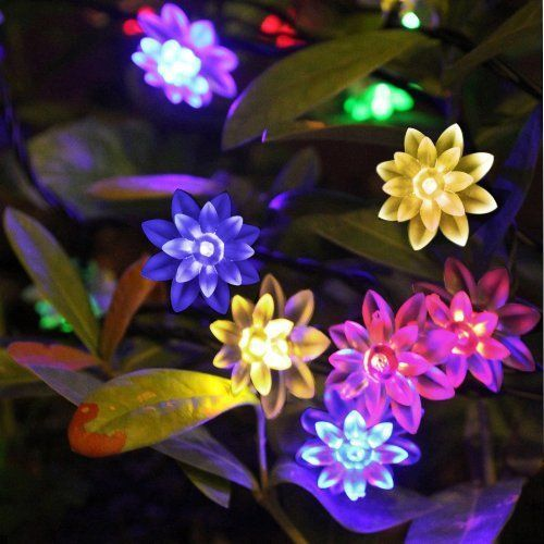 Lotus Flowers Multicoloured Lights - 40 LED Lights