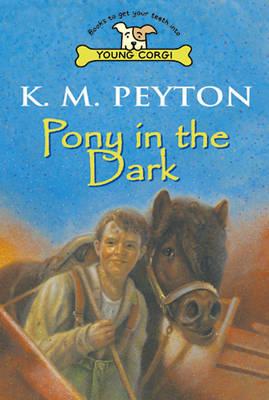 Pony In The Dark by K.M. Peyton