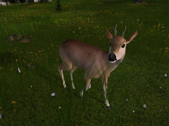 Deer Hunter: The 2005 Season for PC Games image