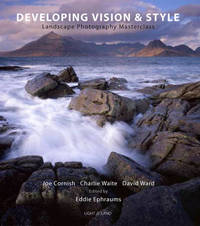 Developing Vision and Style image