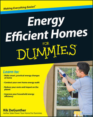 Energy Efficient Homes For Dummies by Rik DeGunther image