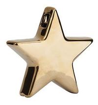 General Eclectic Star Vase - Gold