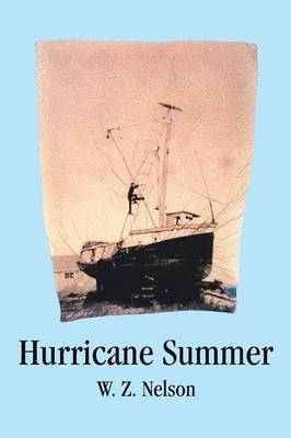 Hurricane Summer by W. Z. Nelson image