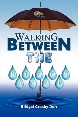 Walking Between the Raindrops by Bridget Crosby Dorr image