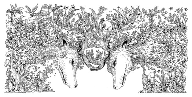 animorphia kerby rosanes book in stock buy now at mighty ape nz