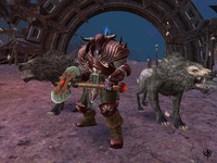 Warhammer Online: Age of Reckoning Collector's Edition for PC