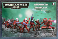 Warhammer 40,000 Eldar Guardian Squad