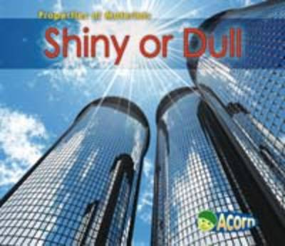 Shiny or Dull by Charlotte Guillain