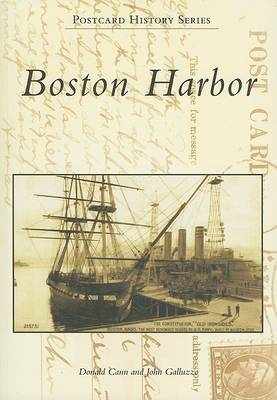 Boston Harbor by Donald Cann image