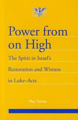 Power from on High: The Spirit in Israel's Restoration and Witness in Luke-Acts by Max Turner