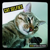 Cat Selfies 2018 Square Wall Calendar