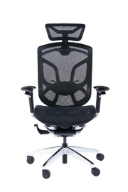 GT Chairs: Dvary Ergonomic Elite - Office Chair