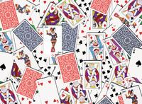 Ravensburger : 52 Shuffle Puzzle 500pc