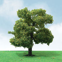 JTT: N Scale Sycamore Trees - 3 Pack image