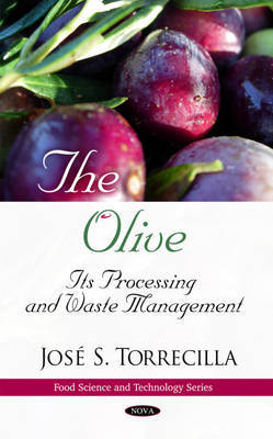Olive by Jose S. Torrecilla