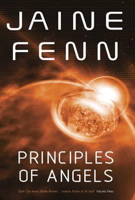 Principles of Angels by Jaine Fenn image