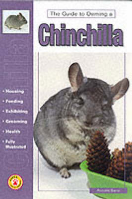 Guide to Owning a Chinchilla by Anmarie Barrie image