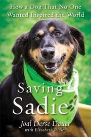 Saving Sadie by Joal Derse Dauer