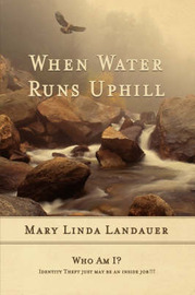 When Water Runs UpHill by Mary Linda Landauer image