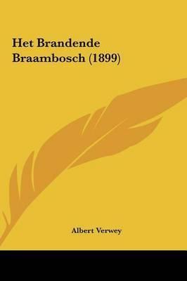 Het Brandende Braambosch (1899) by Albert Verwey