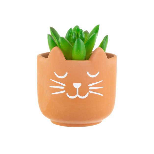 Sass & Belle: Mini Terracotta Planter - Cat's Whiskers