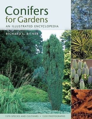 Conifers for Gardeners H/B by Richard L Bitner