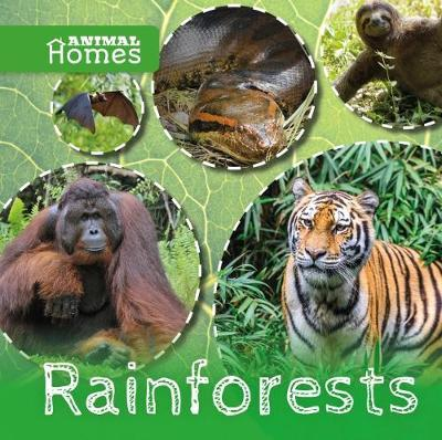 Rainforests by Holly Duhig