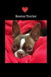 Love your Boston Terrier Journal by Tammie Chrin image