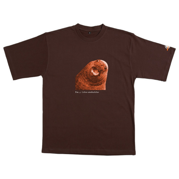 Lolrus Sansbucketus - Tshirt (Chocolate) for  image