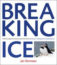 Breaking Ice by Jan Vermeer image