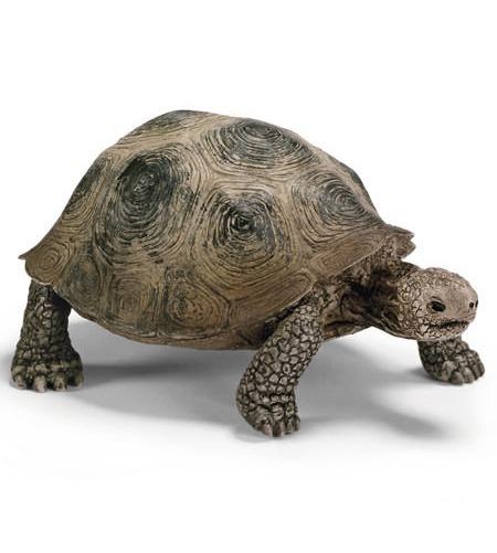Schleich: Giant Tortoise image