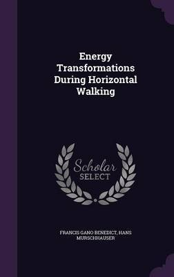 Energy Transformations During Horizontal Walking by Francis Gano Benedict