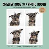 Shelter Dogs in a Photo Booth 2018 Wall Calendar by Guinnevere Shuster