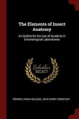The Elements of Insect Anatomy by Vernon Lyman Kellogg image