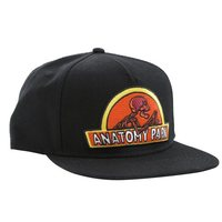 Rick and Morty: Anatomy Park - Snapback Cap