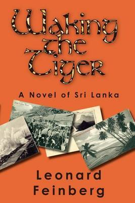Waking the Tiger by Leonard Feinberg image