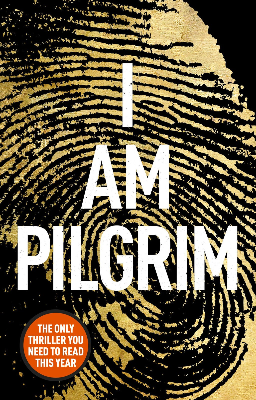 I Am Pilgrim by Terry Hayes image
