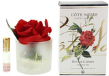 Côte Noire Perfumed Natural Touch Rose in Frost (Carmine Red)