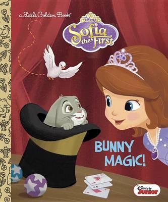 Bunny Magic! by Andrea Posner-Sanchez